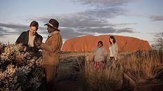 Rangers with tourists, Uluru-Kata Tjuta National Park
