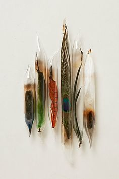 Feather Encapsulations #anthropologie #PinToWin Decorate vases with feathers!