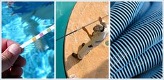 Look for Pool Cleaning Phoenix, AZ. Look at Ranks and additionally Feedback relating to Phoenix, AZ Pool Cleaning relating to right so it's possible to opt for the most suitable Pool Cleaner for your needs. Swimming Pool Plan, Swimming Pool Maintenance, Pool Cleaning Service, Pool Service, Entrepreneur List, Portable Pools, Pool Companies, Intex Pool, Cool Pools