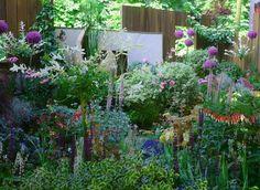 www.rustica.fr - VIDEO : Un jardin de ville par Opus Paysage