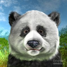 Panda bear art featuring a very detailed image of a cute and majestic endangered species that has become the natural symbol of caring for the environment. Panda Painting, Bear Paintings, Panda Art, Illustration, Animals, Image, Thoughts, Animales, Animaux