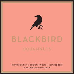 Blackbird Doughnuts in South End Harvard Square, Doughnut Shop, Boston Common, Best Coffee Shop, Bakery Design, Blackbird, Doughnuts, Restaurants, America