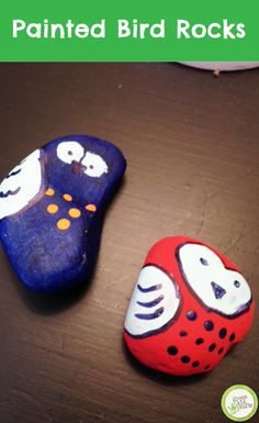 We love these Painted Bird Rocks