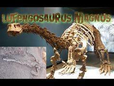 -Hallan en China fósiles de dos dinosaurios de 180 millones de años.