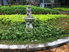 El jardín prohibido jejej , simplemente precioso!  #taipei #tanyayjavi #conecta2enlared #negocioonline