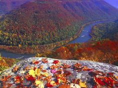 New River Gorge, West Virginia Virginia Homes, West Virginia, Virginia Fall, New River, Mountain States, Have Time, That Way, Wonders Of The World, State Parks