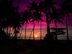 Pink sunset at a coastal beach