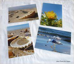 """Lot de 4 cartes postales 10x14cm avec des photos de mer,de soleil,de coquillages""""Bord de mer"""" : Cartes par celinephotosartnature Nature, Photos, Etsy, Sea Shells, Handmade Gifts, Sun, Cards, Naturaleza, Nature Illustration"""