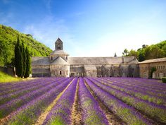 The seemingly endless stretches of lavender make Provence one of the prettiest (and best-smelling) places in France. One of the most scenic spots to enjoy the flower fields is Sénanque Abbey, a twelfth-century church near the village of Gordes. The gentle heather-gray color of the abbey looks custom-made for its surroundings, particularly in the summer when the acres around it bloom into a sea of purple.