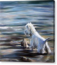 Highlands Terrier, West Highland Terrier, White Terrier, Arte Popular, Scottish Terrier, Boy Art, Dog Portraits, Westies, Dog Names