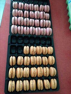 macarons framboise et abricot