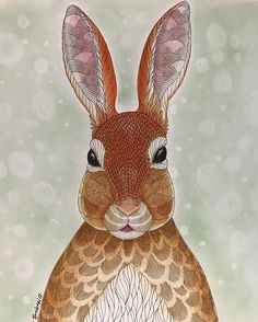 So Simple And Adorable This Rabbit By Milliemarotta Animalkingdombook Derwentpencils Eyeshadowbackground