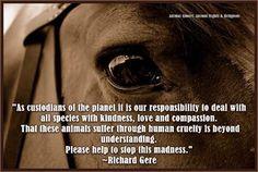 """""""Como guardianes del Planeta, es nuestra responsabilidad tratar a todas las especies con amabilidad, amor y compasión: Que estas criaturas sufran la crueldad humana va más allá del entendimiento. Por favor, ayuda a detener esta locura."""" Richard Gere"""