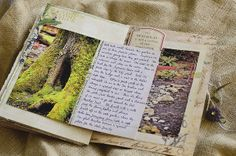 Nature Journal by Marie's Shots, via Flickr
