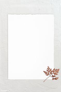 Collage Background, Flower Background Wallpaper, Flower Phone Wallpaper, Flower Backgrounds, Textured Background, Blank Wallpaper, Paper Wallpaper, Wallpaper Backgrounds, Wallpapers