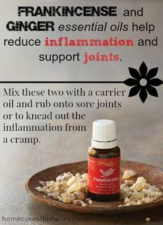 frankincense and ginger essential oils reduce inflammation