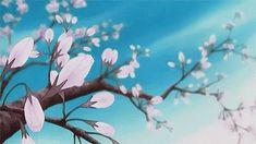Anime Cherry Blossom, Cherry Blossom Background, Anime Gifs, Anime Art, Moving Backgrounds, Anime Flower, Blue Anime, Flowers Gif, Nature Gif