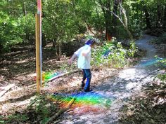 Rainbows in the Forest, Manning Elementary School, Jamaica Plain, Mass. - Playscapes