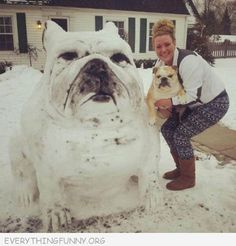 funny dog photo snowman looks like dog