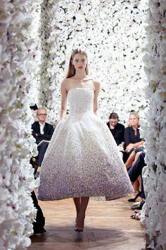 Christian Dior Haute Couture Fashion Show, Fall/Winter 2012 Dior Haute Couture, Style Couture, Couture Fashion, Runway Fashion, Christian Dior, Pretty Dresses, Beautiful Dresses, Look Fashion, Fashion Show