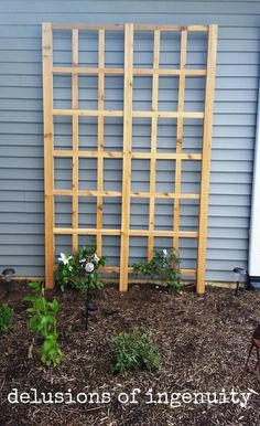 The DIY Trellis of All Time