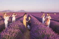 Set in the dreamy lavender fields in Provence, France . . . this has to be one of our most gorgeous proposal shoots to date. Every now and then a gallery comes through and the entire Flytographer team goes wild. Well, buckle up because this proposal is one of the shoots! Perfect Proposal, Surprise Proposal, Proposal Ideas, Proposal Photographer, Cute Love Lines, Cute N Country, Wedding Proposals, String Quartet, Lavender Fields