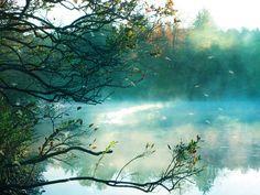 Google Image Result for http://images.fineartamerica.com/images-medium-large/dreamy-nature-aqua-teal-fog-pond-landscape-kathy-fornal.jpg