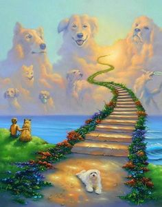 Rainbow Bridge All Dogs Go to Heaven Collie St Bernard Retreiver Matted Art Print Pet and Poem Sympathy Memorial Stairway to Heaven All Dogs, I Love Dogs, Cute Dogs, Dogs And Puppies, Doggies, Animals And Pets, Cute Animals, Pet Loss Grief, Pet Remembrance