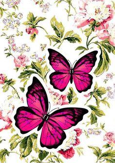 Cell phone Wallpaper / Background. Cute Wallpaper Backgrounds, Flower Backgrounds, Cute Wallpapers, Iphone Wallpaper, Butterfly Wall Art, Dragonfly Art, Butterfly Wallpaper, Butterfly Pictures, Unique Paintings