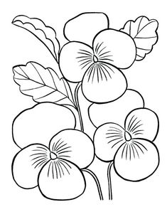 Mothers Day Coloring Sheets, Flower Coloring Sheets, Printable Flower Coloring Pages, Coloring Book Pages, Flower Pictures, Flower Images, Colorful Flowers, Spring Flowers, Jungle Flowers