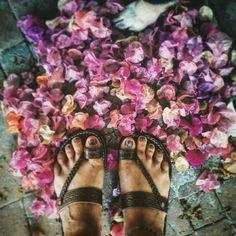 #santikarootsart #summer #flores #colorful #dog #sandalias #agosto #vacaciones #fotografía
