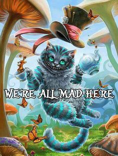 Cheshire cat! Mad I tell you!