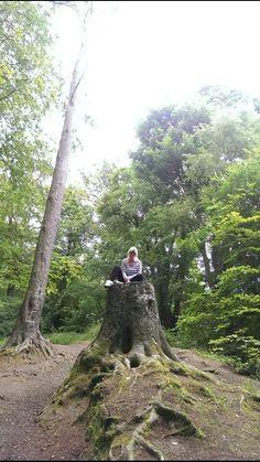 Me enjoying a rest in cavehill park..