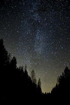 Magical starry night sky.