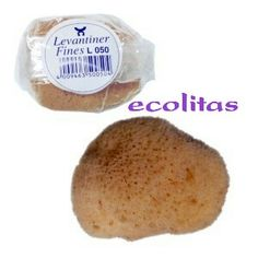 Copa Menstrual Meluna, Natural Sponge, Sea Sponge, Cloth Pads, Healthy Alternatives, Ethnic Recipes, Flow, Cups, Budget