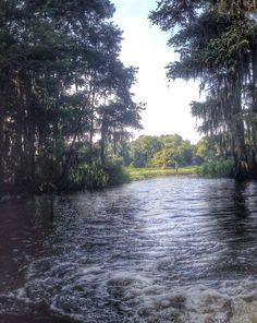 Caddo Lake in the Summer, you learn to appreciate a lil shade over your head in August