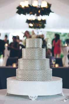 gray cake with white swiss dots | Sean Money and Elizabeth Fay #wedding