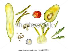 mix of vegetables for cooking: zucchini, avocado, garlic, salad, beans, fennel, agaric, field mushroom, tomato, asparagus, hand-painted watercolor - stock photo