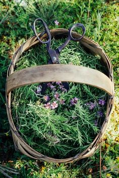 Anyone who's cooked with them know that fresh herbs are always better than dried. And having them on-hand in your garden makes trying new recipes infinitely easier. Need tarragon? No problem!