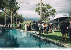Wedding Pre-Drinks Alongside the Pool | Photography by Stephanie Veldman | Venue : Angora Stud Farm