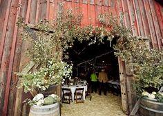 Pumpkin barrel barn entry