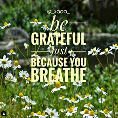 Appreciate your life while you have it.In a world where everything around us is changing and overturning daily,don't take anything for granted!The fact that we opened our eyes today and saw the light of this day,the fact that we are breathing is a gift from God!