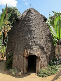 Grass thatched hut, Dorze, Ethiopia