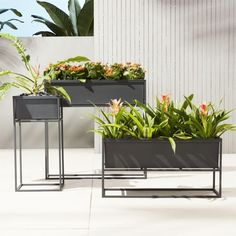 Industrial planter gives rise to greens in matte carbon powdercoat. Nested within sculptural iron frame, galvanized steel boxes remove for easy planting and watering. Arrange together to create a hi/lo effect, indoors or out. Decor, Furniture, Industrial Planter, Indoor Planters, Modern Outdoor, Home Decor, Home Decor Mirrors, Indoor, Indoor Plants