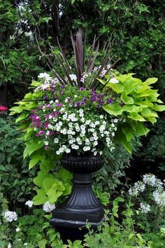 Traditional Garden Urns and Contemporary Containers- Traditional Garden Urns and Contemporary Containers Love, love, love these! Traditional Garden Urns and Contemporary Containers :: Hometalk - Container Herb Garden, Container Gardening Vegetables, Container Flowers, Container Plants, Succulent Containers, Vegetable Gardening, Landscaping Tips, Garden Landscaping, Plant Design
