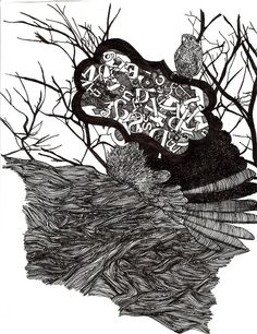 hawk nature line drawing by me.