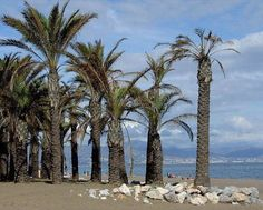 Lost on the beach in Torremolinos, Spain (Video and photos) .. http://www.allvoices.com/contributed-news/17553865-lost-on-the-beach-in-torremolinos-spain-video-and-photos