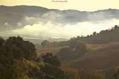 ricardocarmonafdez posted a photo:  Fotografía capturada en la Serranía de Ronda, cuya capital es la ciudad de Ronda, asentada sobre una meseta en un valle que en el momento de la captura estaba cubierto de niebla. Si se mira la imagen en grande se puede atisbar en el centro de la imagen y sobresaliendo de la niebla, la ciudad por la cara del mayor escarpe, que da al tan conocido Valle de los Molinos. Al fondo y como comenté en el monocromo, se ve la silueta de la Sierra de las Nieves y…