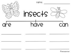 worksheet more butterfly insect unit cycles science insects worksheet ...