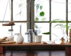 Indoor Gardening : DIY Herb Garden : Gardening Tips